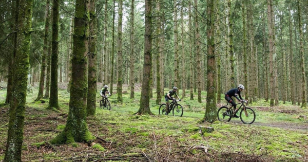 Single vtt marne